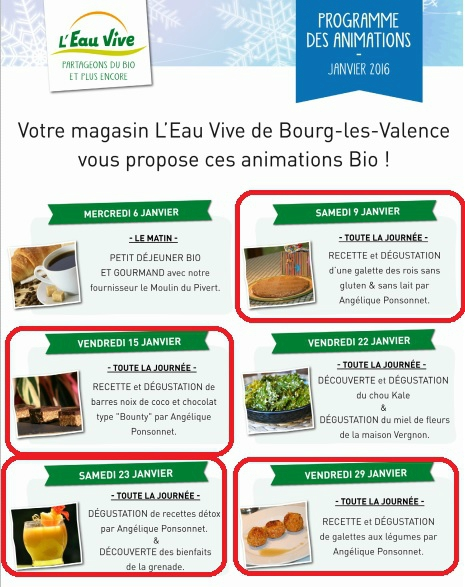 animations janvier