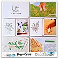 Dt passion scrap-2 pages de pl