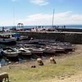 Petit port d'Amantani