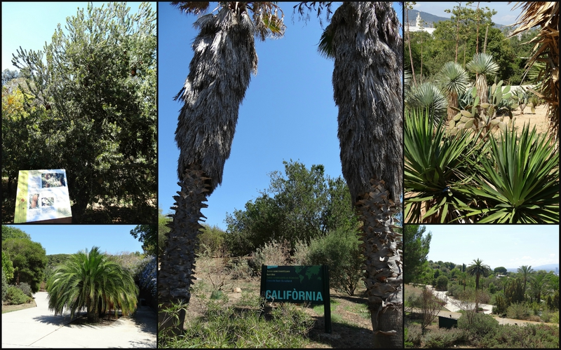Parc botanique de Barcelone