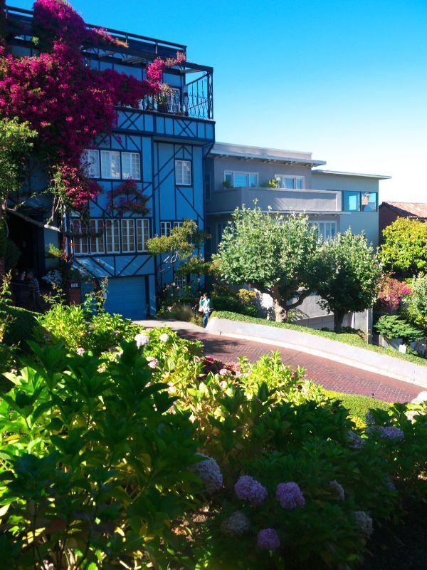 San Francisco Lombard Street 1