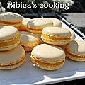 Macarons au citron {au i-cook'in}