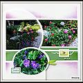 Jardin de mimou - pivoines et autres fleurs
