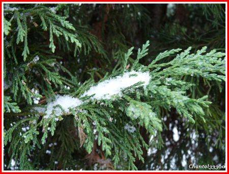 neige_06_01_2010_148