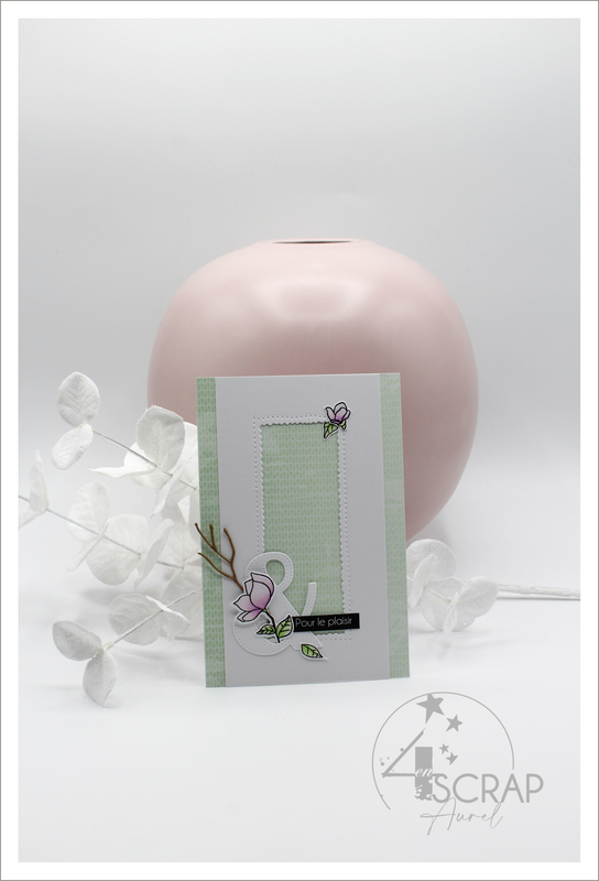 230221 - Cartes Magnolias - AP P21 - J1 #2