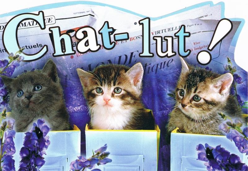 chat-lut