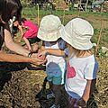 Les enfants du centre social au jardin partagé