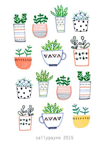 Succulentes Dessin