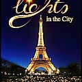 Lights in the city - le 18/12/2014 au champ de mars - expo in the city