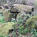 L'allée couverte du brohet dans la forêt du beffou à loguivy-plougras (22)