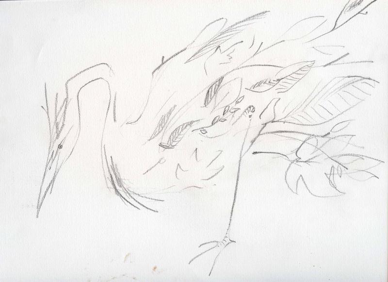 leaf-heron
