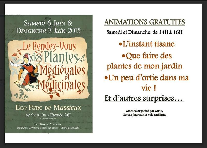6-7 juin 2015 - plantes médiévales et médicinales