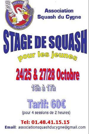 affiche_stage_octobre_2011__moiti__