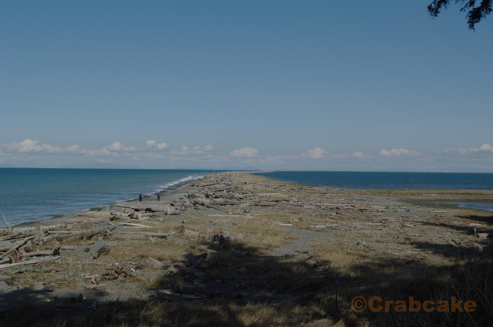 Dungeness Area2