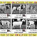 Loto des animaux de la ferme