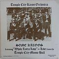 The temple city kazoo orchestra, some kazoos, rhino rec., lp, 1978
