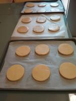 BISCUITS CHOUETTES 106