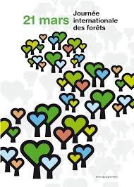 """Résultat de recherche d'images pour """"journée internationale des forêts 2019"""""""