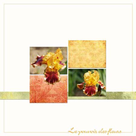 Le_pouvoir_des_fleurs