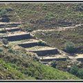 Anciennes terrasses, Nebbiu...