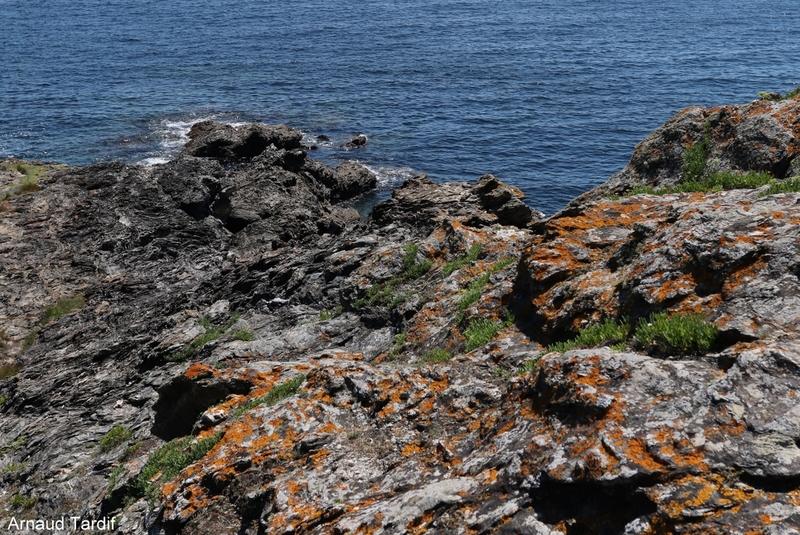 00850 Guidel - L'Ile de Groix - Kérigant - De Stankenn à la Baie des Currés