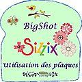 La big shot de sizzix toutes les plaques et leurs utilisations