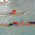 maitre nageur 2 011
