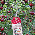 ♫ le temps des cerises ♥ cherries ♥ little house