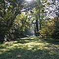 [haute-savoie] promenade dans la forêt de ripaille