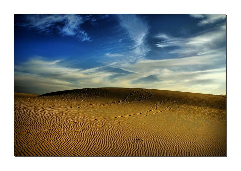 dune 9