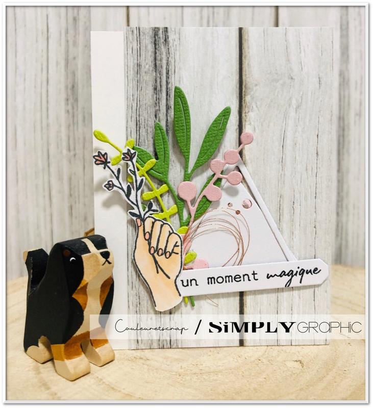 Couleuretscrap_pour_Simply_Graphic_carte_PL_magique