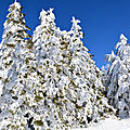 23/02/18 : la neige dans les vosges # 3