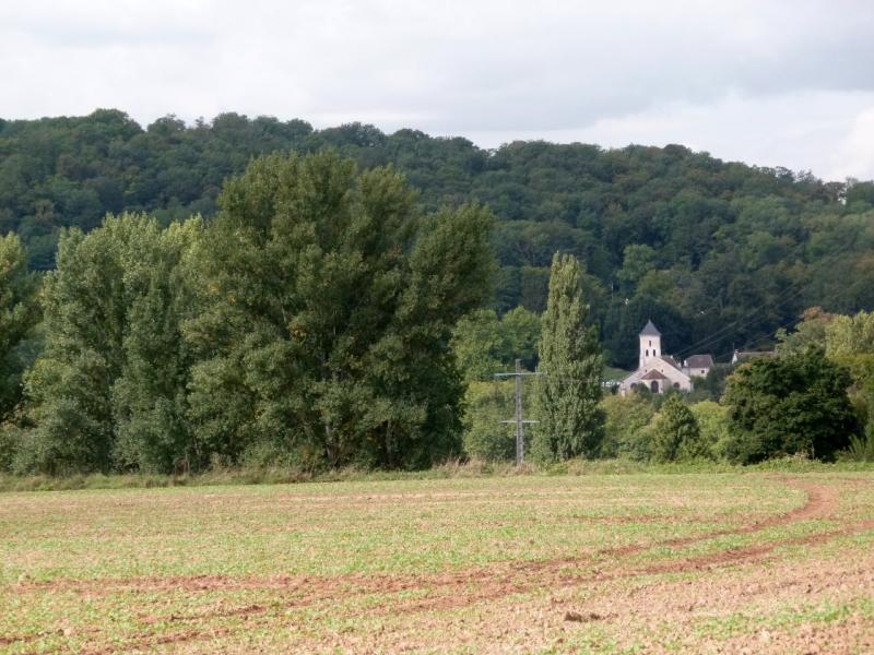 les coteaux de la Marne (29)