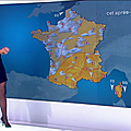 taniayoung03.2015_09_24_meteotelematinFRANCE2