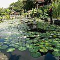089_Tirta Gangga_jardin3