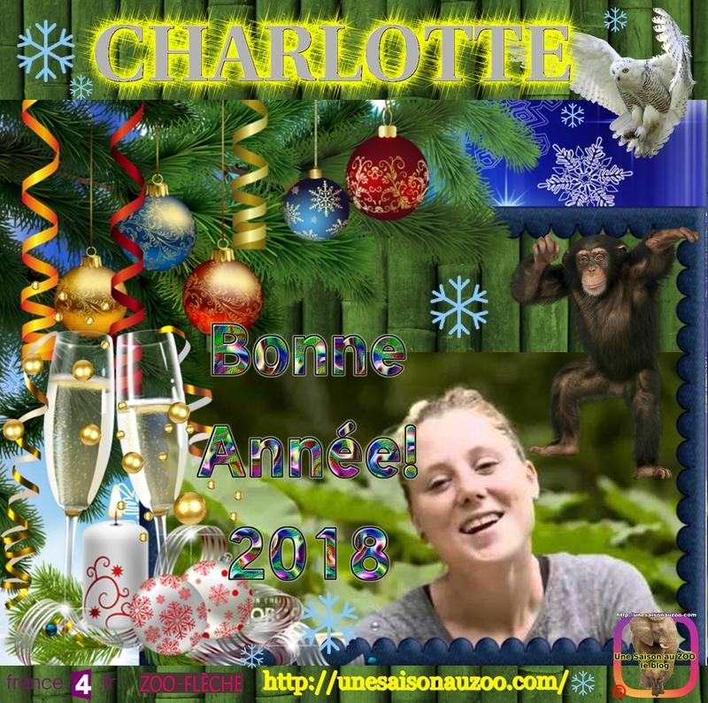 CHARLOTTE 0 Nouvelle an 2018