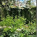Windows-Live-Writer/Joli-printemps-au-jardin-_601C/20170402_133737_thumb