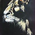 Lion au pastel