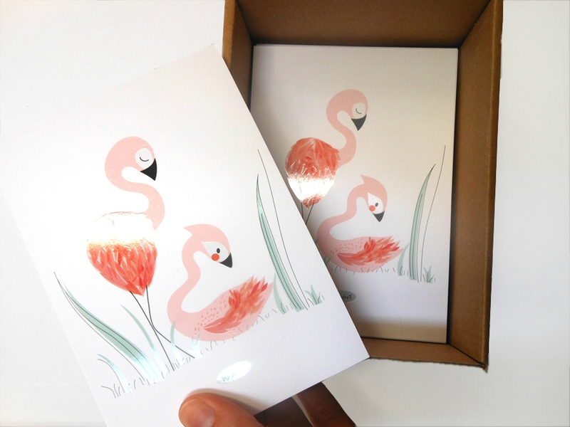 zabeil-carte-flamant rose
