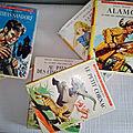 Collection idéal bibliothèque aux éditions hachette 1950/1995