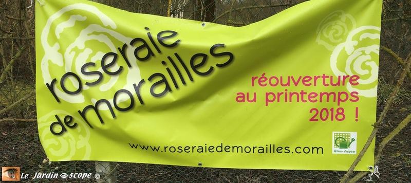 Roseraie de Morailles