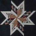 étoile vol d'oies brigitte
