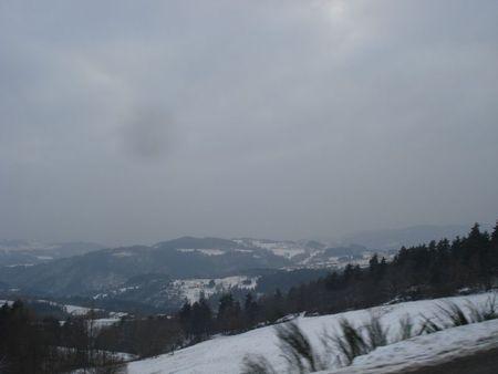 Janvier 2008 Neige & gel (5)