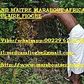 Marabout international fiogbe-bon maître marabout