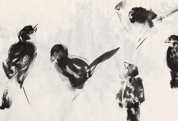 nuage-oiseaux
