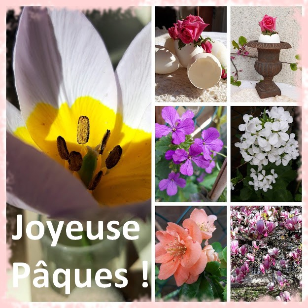 20200404_162216-COLLAGEPAQUES