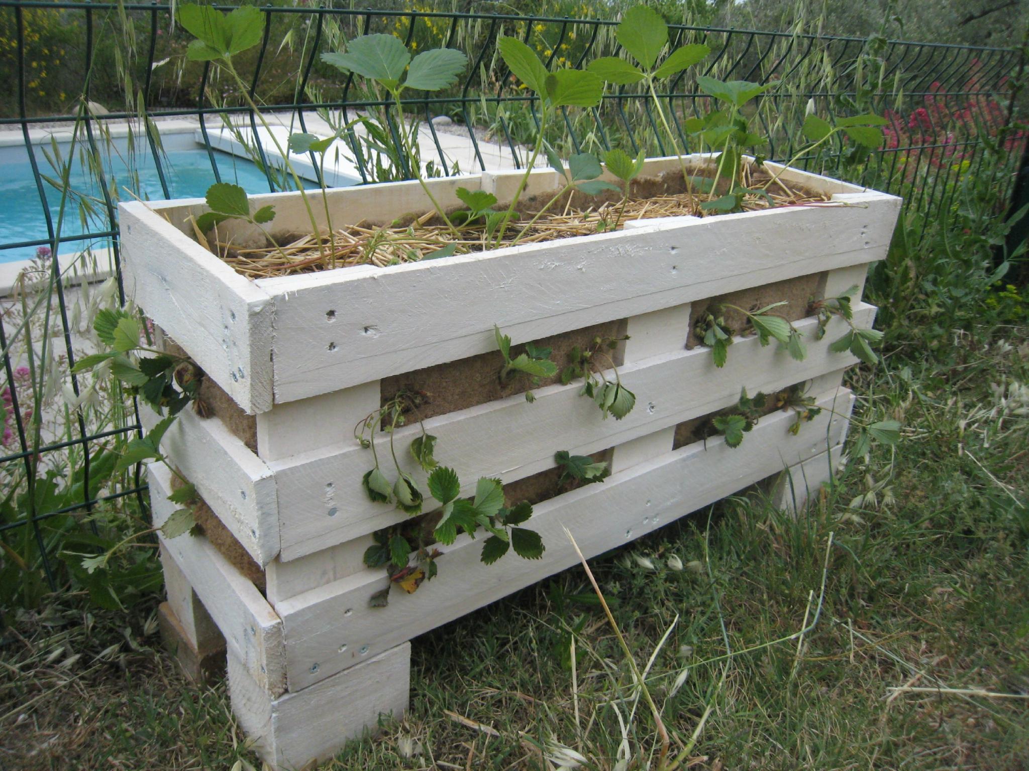 des jardini res pour les fraises en r cup de palettes cr ations et bricolages d 39 oli. Black Bedroom Furniture Sets. Home Design Ideas