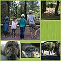 Une petite sortie au zoo