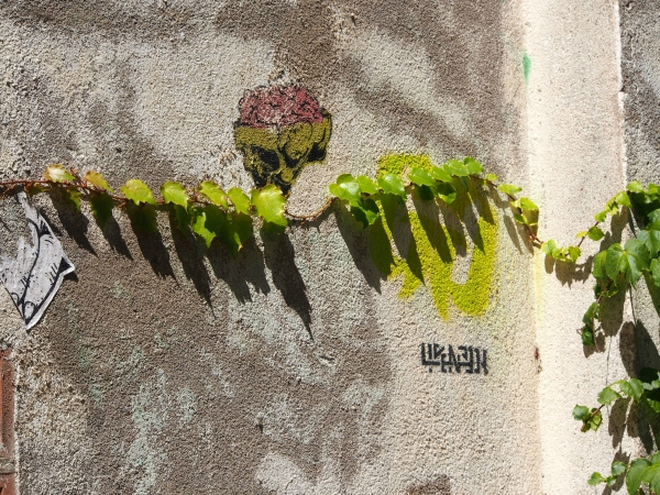 cdv_20140816_32_streetart_licenceH