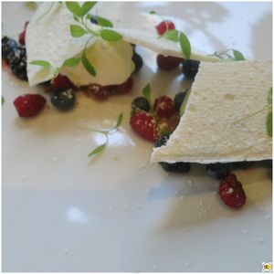 Fruits rouges, meringue brisée, glace basilic